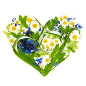 Heart Made of Flowers and Grass — Stock Photo