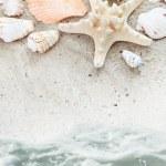 Sea Beach with Shells Border — Stock Photo