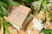 Homemade Soap and Sea Salt — Stock Photo