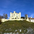 Hohenschwangau castle in Germany — Stock Photo