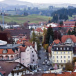 Stock Photo: Aerial view to Fussen, Germany