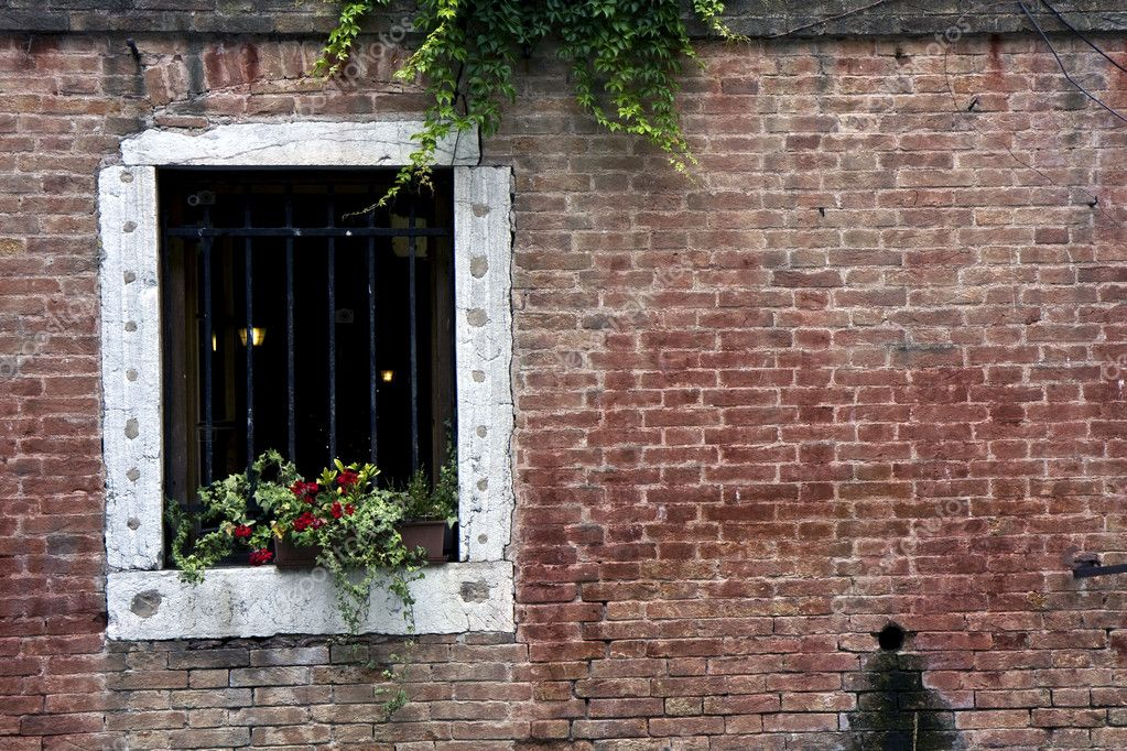 Brick wall and a window with flowers in Venice — Stock Photo #6392067