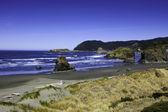 Pacific Coast — Stock Photo
