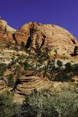 Nationaalpark zion — Foto de Stock