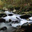 Creek running thru Smoky Mountain National Park — Stock Photo