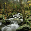 Fall in the smoky mountains — Stock Photo
