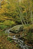 Vermont im herbst — Stockfoto