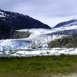Stock Photo: Mendenhall Glacier