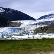 Mendenhall Glacier — Stock Photo #6189753