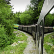 Stock Photo: Scenic train from Skagway to White Pass Alaska
