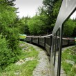 Scenic train from Skagway to White Pass Alaska — Stock Photo