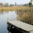 Jetty on a lake — Stock Photo