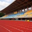 Stock Photo: Track Lanes and Stadium