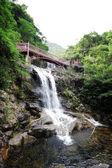 Beautiful waterfall in the garden — Stock Photo