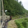 Vale of Rheidol Railway line - Stock Photo