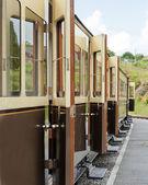 Vale of Rheidol Railway line — Stock Photo