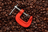 Coffee bean in a clamp — Stock Photo