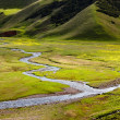 Small rivers in alpine meadows — Stock Photo