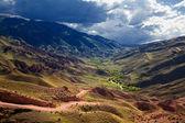 Oasis in desert mountains — Stock Photo