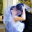 Bride and Groom Kissing Under Veil - Stok fotoğraf