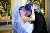 Bride and Groom Kissing Under Veil — Stock Photo