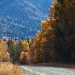 Stock Photo: Old country road in autumn mountain forest
