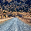 Old country road in autumn mountain forest — Stock Photo #6608762