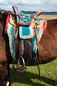 伝統的なモンゴルの馬サドル — ストック写真