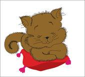 Background. A beautiful sleeping kitten on a pillow — Stock Vector