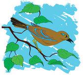 Belo pássaro em um galho com folhas. — Vetor de Stock
