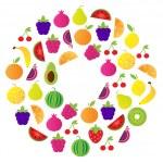 Fresh Fruit Circle isolated on white background — Stock Vector