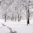 Snow-covered park — Stockfoto