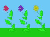 Träd blommor — Stockfoto