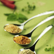 Stock Photo: Three Spoonfuls of Spice Blends
