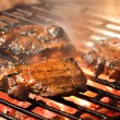 Grilling marinated meat - Stock Photo