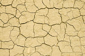 Cracks in dry soil — Stock Photo