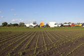 Campo di grano e camion — Foto Stock