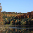 Twistesee -  