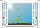 Vector illustration green sprouts in an open window — Stock Vector