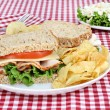 Healthy Turkey Sandwich on Whole Grain Bread — Stock Photo #5838927