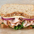 Healthy Turkey and Cheese Sandwich on Whole Grain Bread - Stok fotoğraf