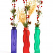Christmas decoration in colored glass vase on white background — Stock Photo #6682527