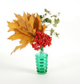 Autumn Bouquet with ash and oak leaves in a vase with colored glass on a wh — Stock Photo
