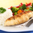 Chicken Breast with Vegetables and Rice — Stock Photo #5422430