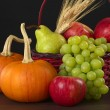 Autumn Basket - Stock Photo