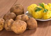 Peruvian Yellow Potato — Stock Photo