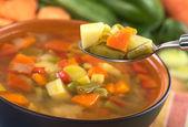 Fresh Vegetable Soup — Stock Photo