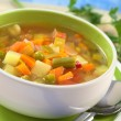 Fresh Vegetable Soup — Stock Photo #5783398