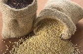 Roh weiß Quinoa Körner — Stockfoto
