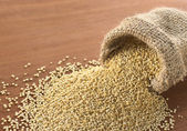 Raw White Quinoa Grains — Stok fotoğraf